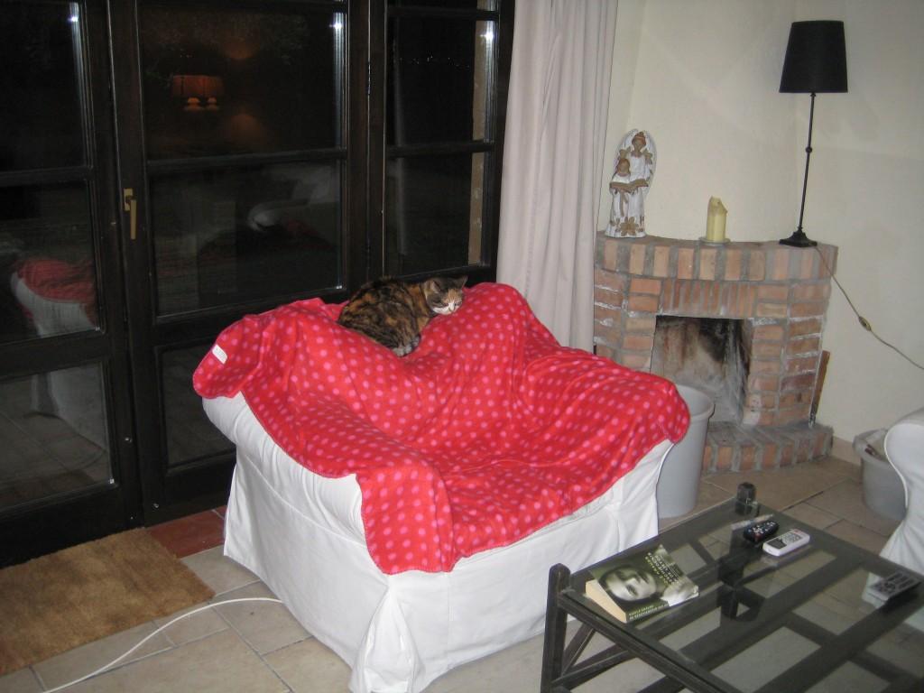 Tootsie's slaapplek.